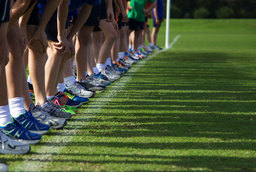 Boys Cross Country Makes History